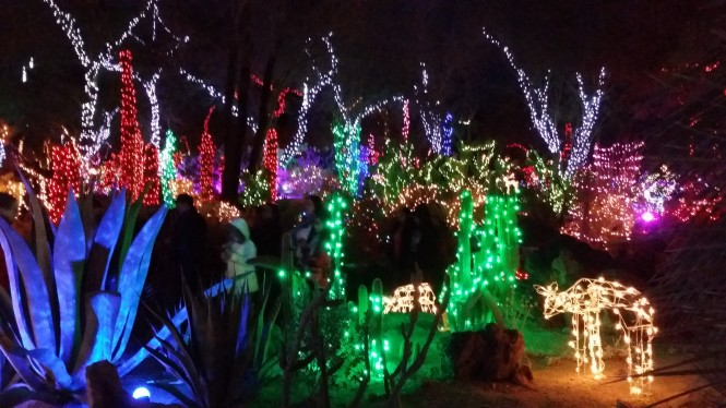 Christmas vegas style at ethel m s chocolate factory - Ethel m cactus garden christmas 2017 ...