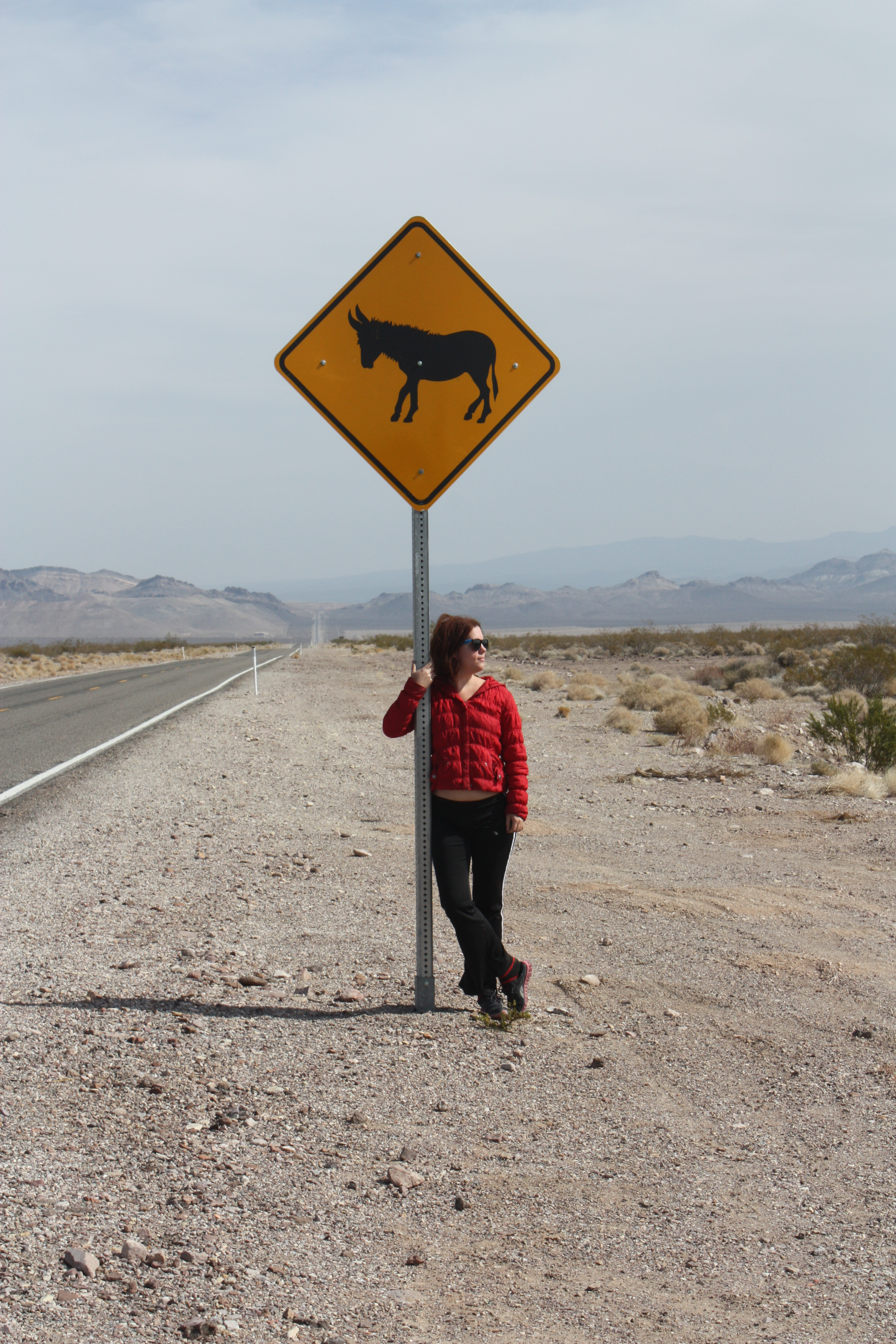 Me, standing next to the burro sign near Death Valley