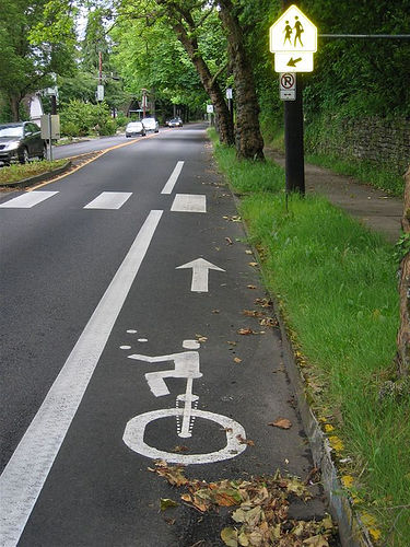 painted unicycle lane