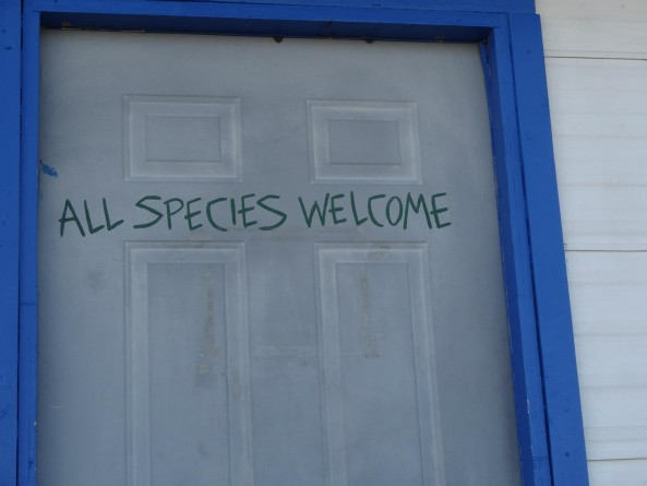 """All species welcome"" sign in Area 51"