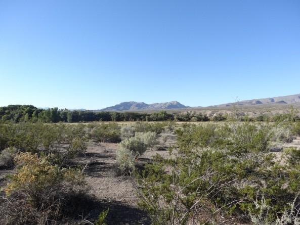 camping spot near Rachel, Nevada