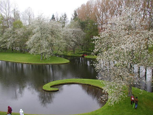unique pond and trees in garden in Scotland