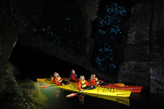 glow worm caves, Lake McLaren, Tarunga, New Zealand