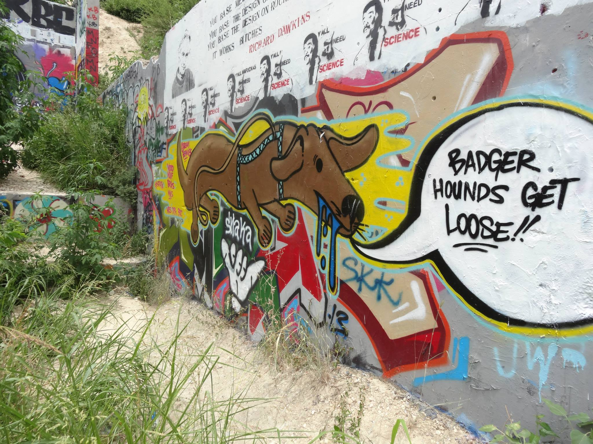 graffiti art in Austin