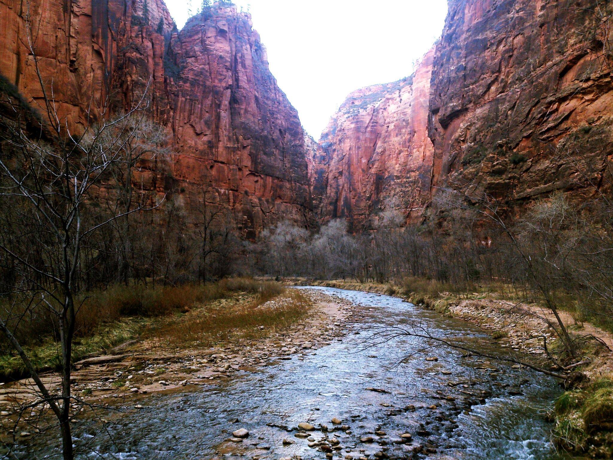 Virgin River and mountains at Zion