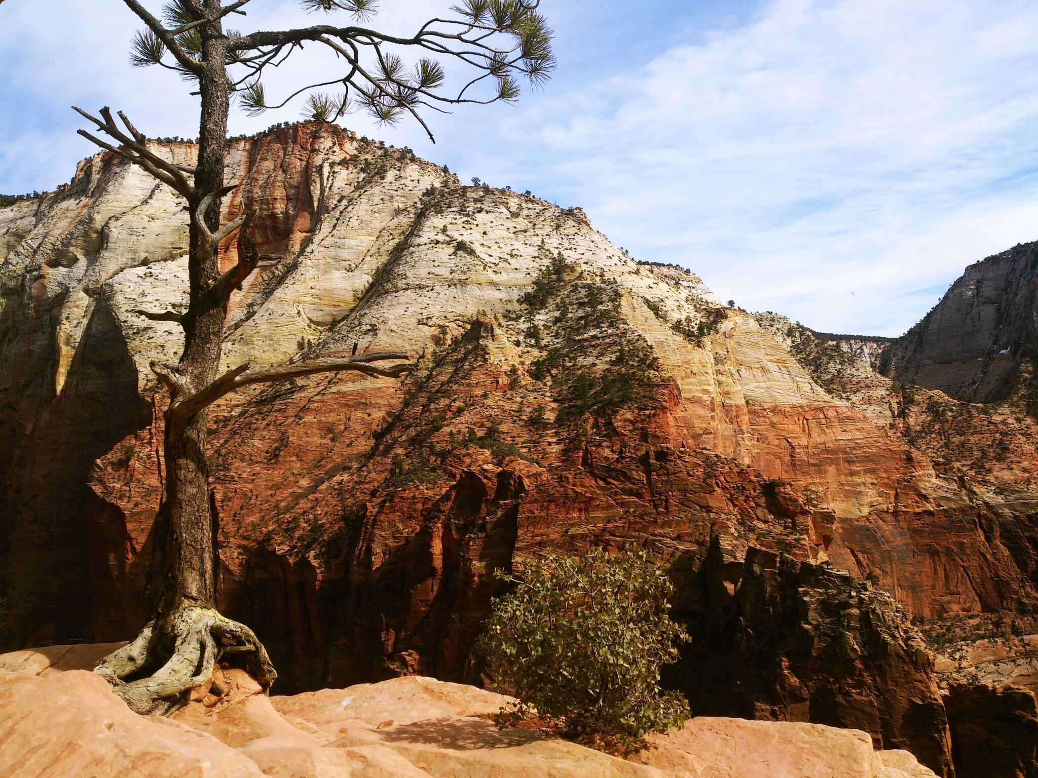 Hiking Angels Landing at Zion National Park