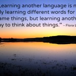 learningaforeignlanguage