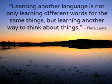 learningaforeignlanguage