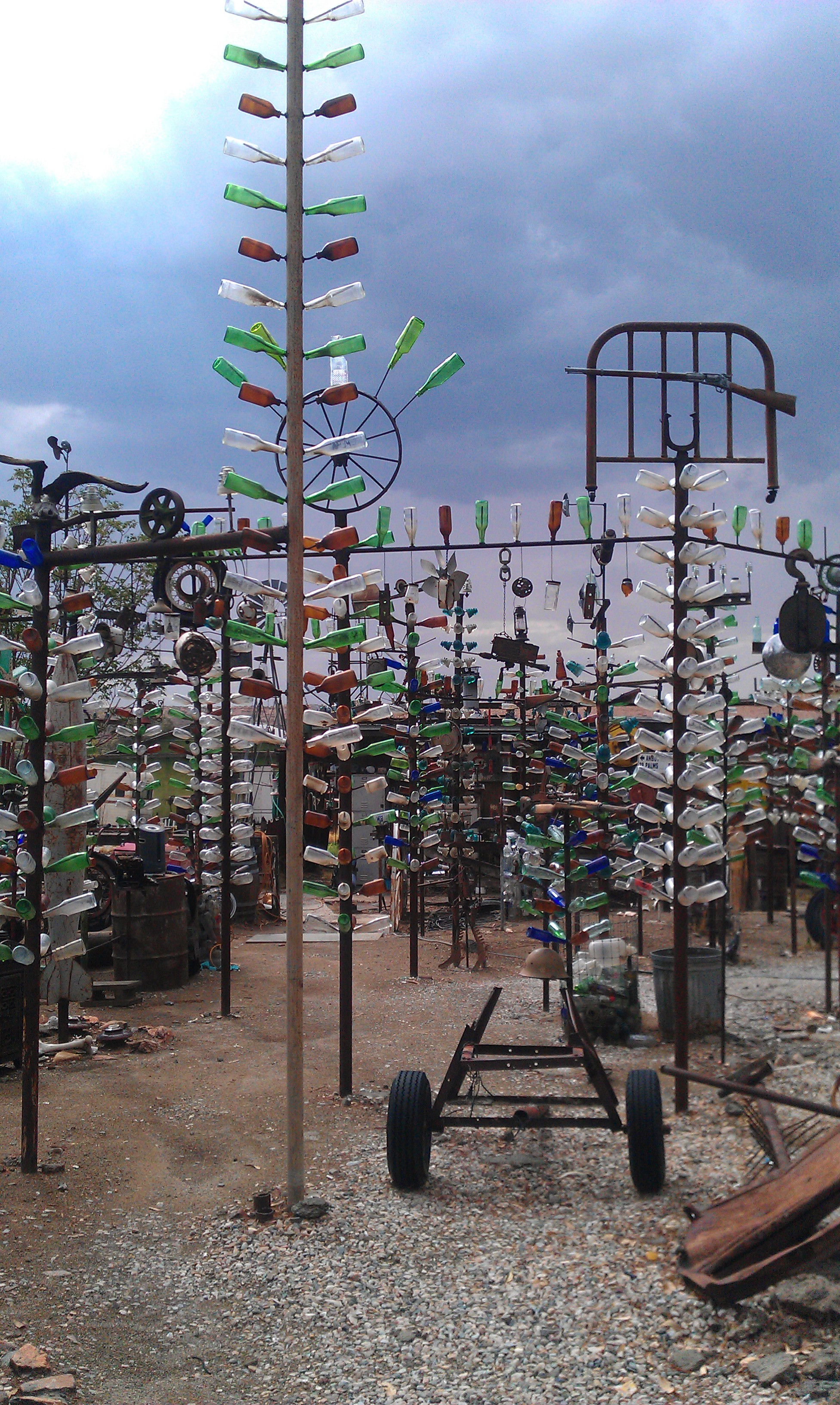 bottle tree ranch